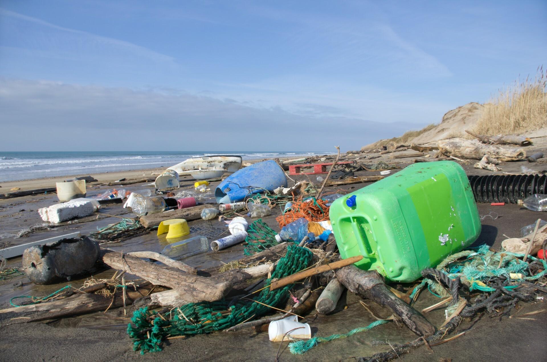 Surfriders Rise Above Plastics image 1 1
